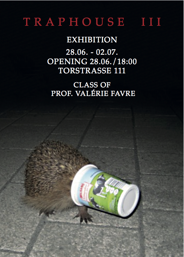 FLYER-TRAP HOUSE III-DRUCK-2.2